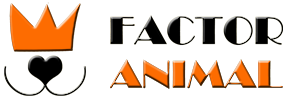 Factoranimal screenshot